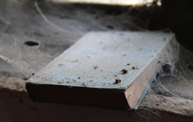 Dust Vs. Dust Mites
