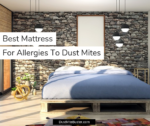 Best Hypoallergenic Mattress For Allergies To Dust Mites 2019