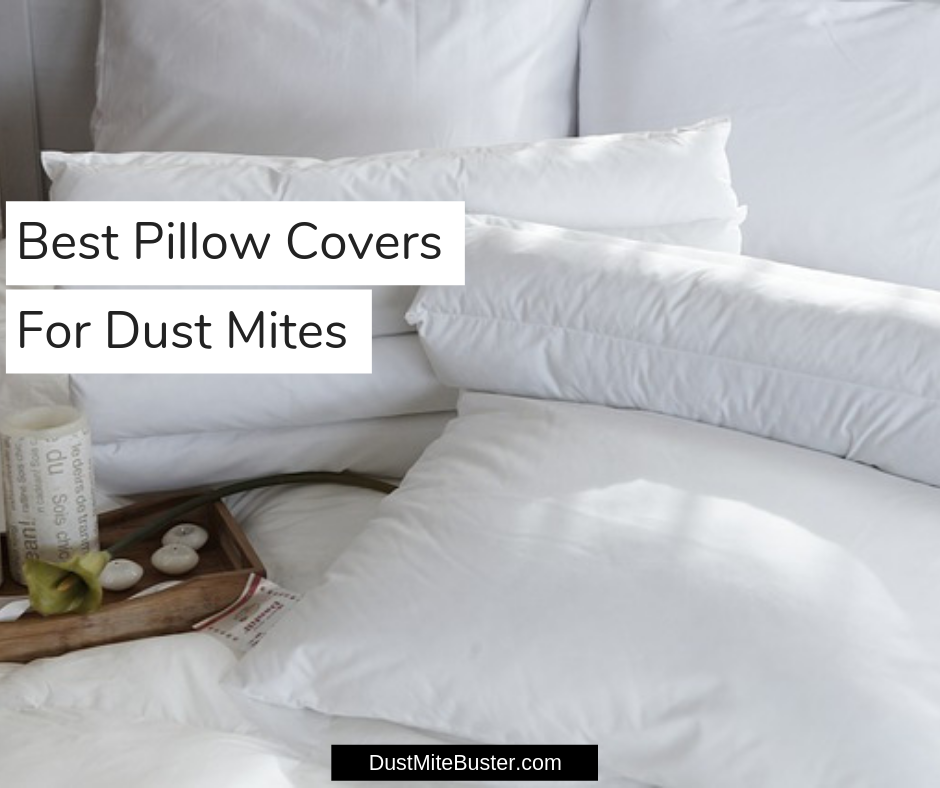 Best Pillow Covers For Dust Mites 2019