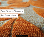 Best Steam Cleaners For Dust Mites Infested Carpets 2019