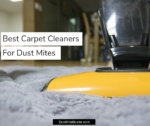 Best Carpet Cleaners For Dust Mites 2019