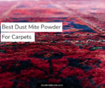 The Best Dust Mite Powder For Carpets 2019
