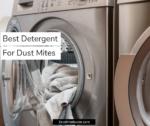 Best Detergent for Dust Mites 2020