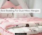 Best Bedding For Dust Mites Allergies 2019