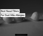 Best Nasal Filters For Dust Mites Allergies 2020
