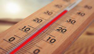 Does Heat Kill Dust Mites