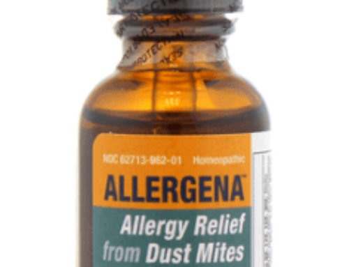 Allergena Dust and Mite Review (Should you buy?)