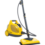 Best Steam Cleaners for Bed Bugs (2020 Review)