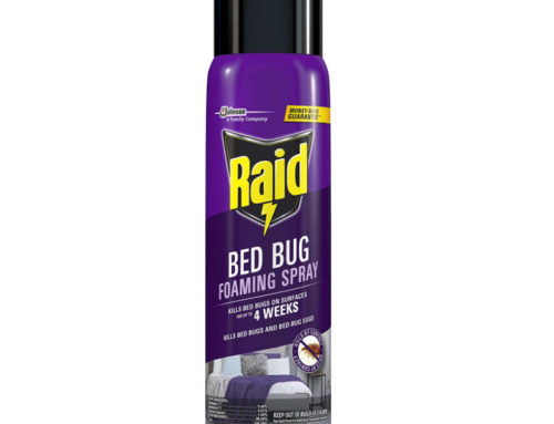 Does Raid Kill Bed Bugs?